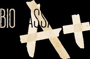My CMS Logo